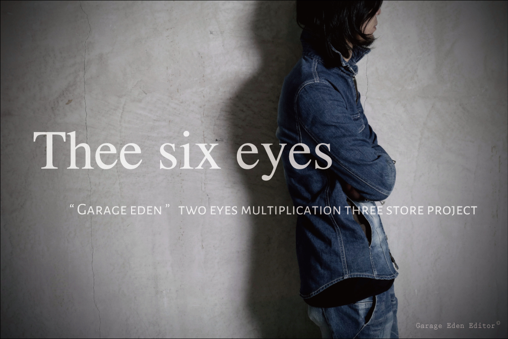 Thee six eyes Project
